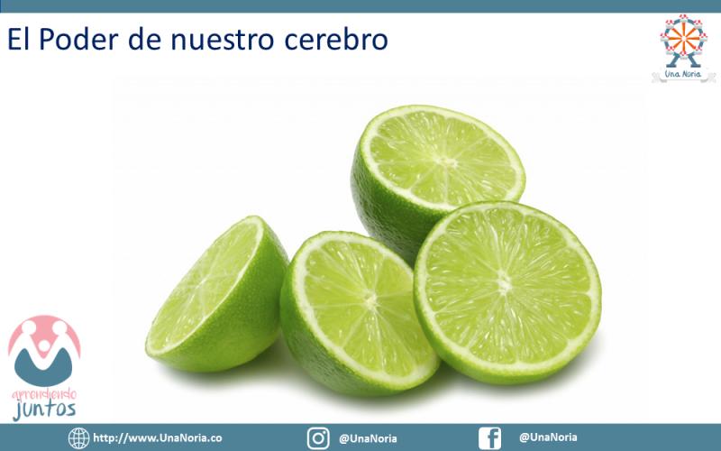 PNL_Tu_Mejor_Herramienta_Para_La_Crianza17