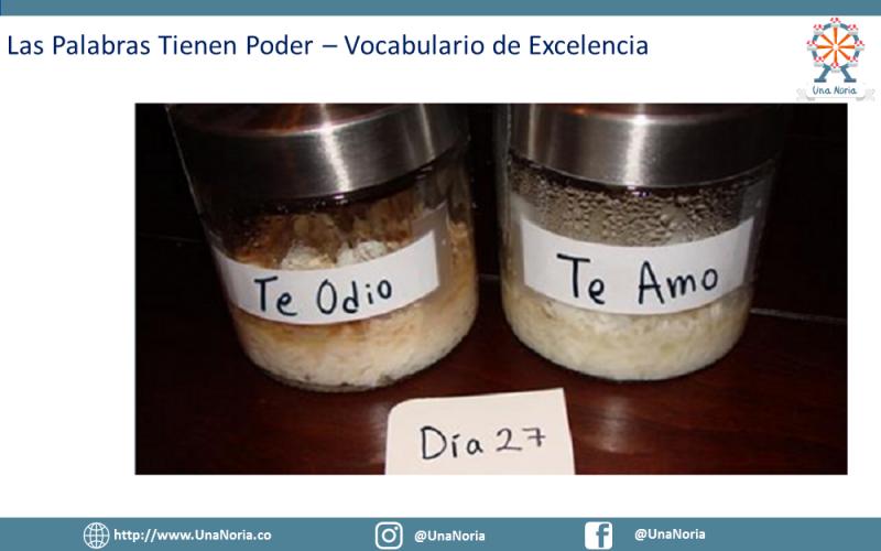 PNL_Tu_Mejor_Herramienta_Para_La_Crianza25